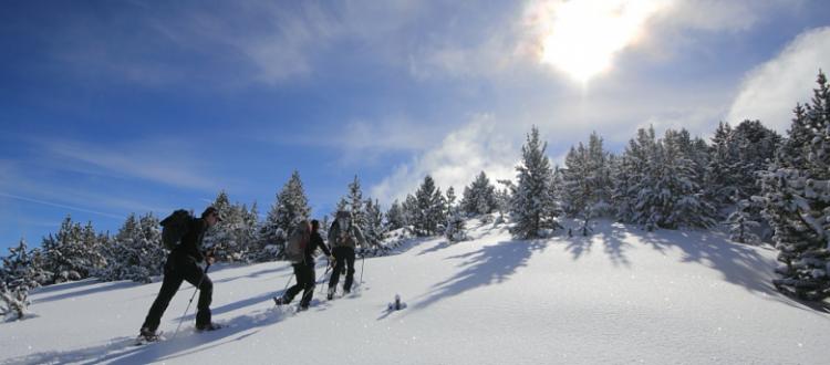 Excursiones con raquetas de nieve, esquí alpino y de montaña.